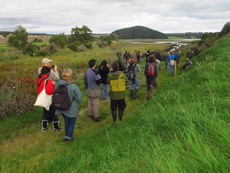 Wader Study Group conference in Scotland